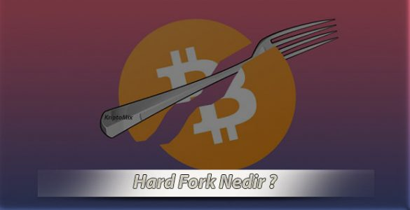 hard fork kavramı