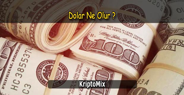 dolar ne olur 2019