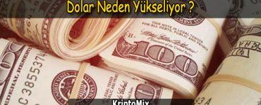 dolar neden artıyor