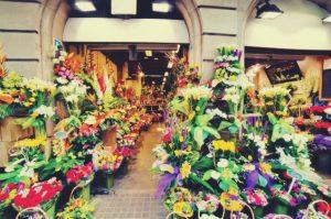 çiçekçi-açmak